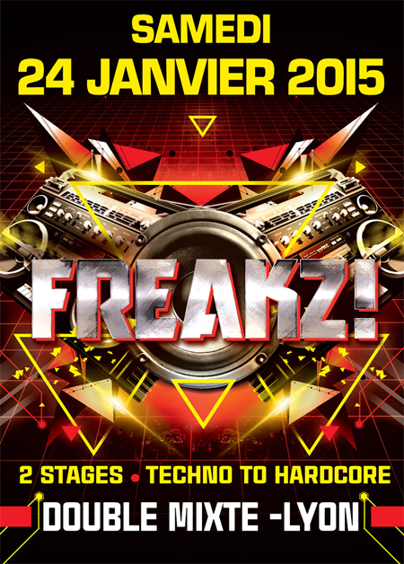 24-01-15 > FREAKZ ! > 2 ROOMS >LE DOUBLE MIXTE - LYON Fly-lyon-450x628